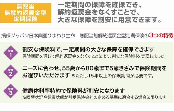 死亡保険 掛け捨て おすすめ 損保ジャパン日本興亜ひまわり生命の無解約返戻金型定期保険