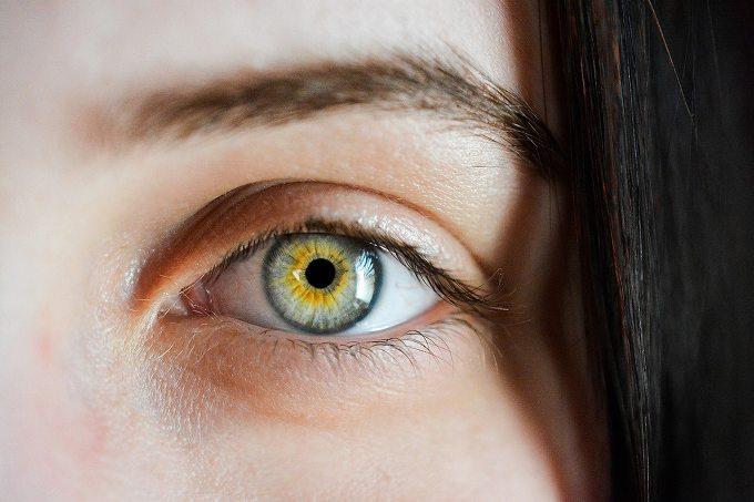 加齢黄斑変性 医療保険