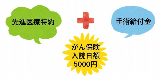 がん保険 日額 5000円 特約付加