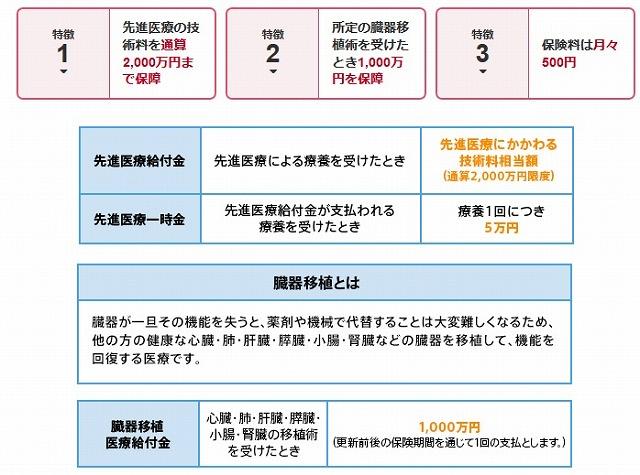 生命保険 自費診療 損保ジャパン日本興亜ひまわり生命