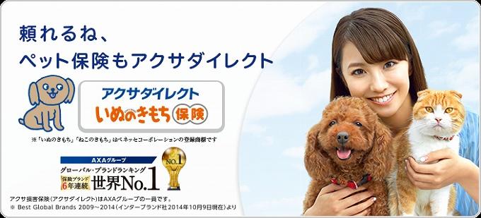 アクサダイレクト ペット保険 対象外 ペット保険とは?