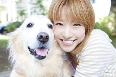 楽天 動物保険 魅力的なペット保険